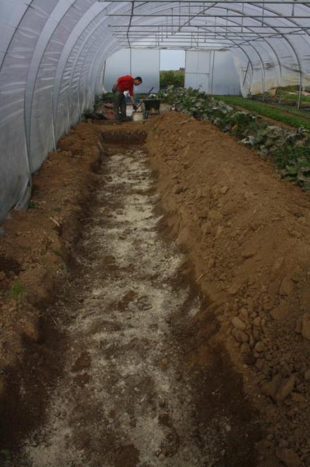 La tranchées pour accueillir les 5000 racines..